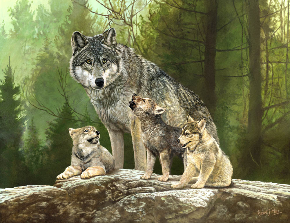 Limited Edition Wolf And Cubs Print Rmle71