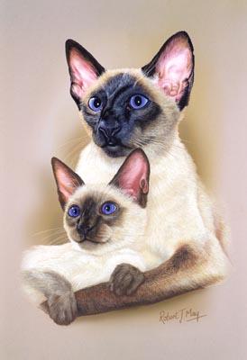 A Borzoi Dog Siamese Cat & Kitt...